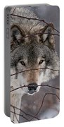 Timber Wolf Pictures 620 Portable Battery Charger