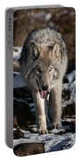 Timber Wolf Pictures 954 Portable Battery Charger