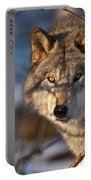 Timber Wolf Pictures 981 Portable Battery Charger