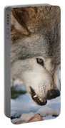 Timber Wolf Pictures 985 Portable Battery Charger