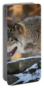 Timber Wolf Pictures 991 Portable Battery Charger