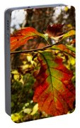 Tinged In Red Portable Battery Charger