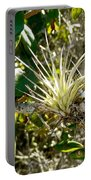 Tiny Air Plants Portable Battery Charger