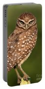 Tiny Burrowing Owl Portable Battery Charger