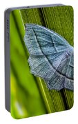 Tiny Moth On A Blade Of Grass Portable Battery Charger