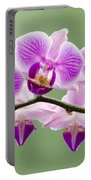 Tiny Orchid Faces Portable Battery Charger