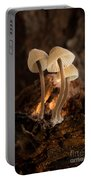 Tiny Toadstools Portable Battery Charger