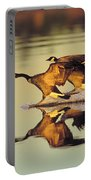 Tk0157, Thomas Kitchin Canada Geese Portable Battery Charger