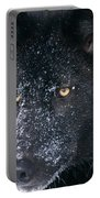 T.kitchin Tk1731e, Gray Wolf, Timber Portable Battery Charger