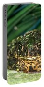 Toad Portable Battery Charger