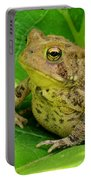 Toad Sitting Portable Battery Charger