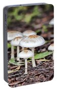 Toadstools V8 Portable Battery Charger