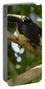 Toco Toucan Amazon Jungle Brazil Portable Battery Charger