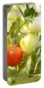 Tomatoes On The Vine Portable Battery Charger