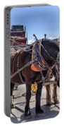 Tombstone Stagecoach 2 Portable Battery Charger