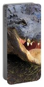 Toothy Grin Portable Battery Charger by Adam Jewell