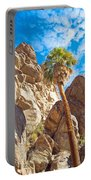 Top Of A Palm Near Top Of Andreas Canyon-ca Portable Battery Charger