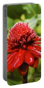 Torch Ginger Single  Portable Battery Charger