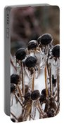 Toronto Ice Storm 2013 - Frozen Black Eyed Susans  Portable Battery Charger