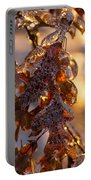 Toronto Ice Storm 2013 - Oak Leaves Jewelry Portable Battery Charger