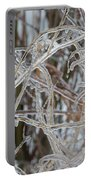 Toronto Ice Storm 2013 - Pale Frozen Grasses  Portable Battery Charger
