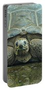 Tortoise Portable Battery Charger