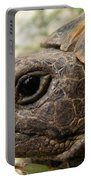 Tortoise Portrait In Macro Portable Battery Charger