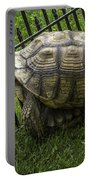 Tortoise Turtle Time Portable Battery Charger