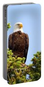 Totem Eagle Portable Battery Charger