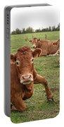 Tough Cows Portable Battery Charger