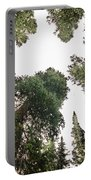 Towering Pine Trees Portable Battery Charger
