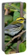 Townsends Warbler In Tree Portable Battery Charger