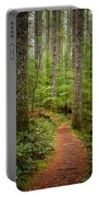 trail to Lower Lewis Falls Portable Battery Charger