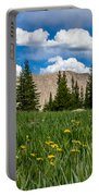 Trappers Lake Meadow Portable Battery Charger
