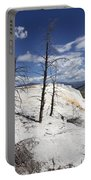 Travertine Terrace And Dead Trees Portable Battery Charger
