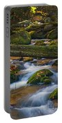 Tree Bridge In The Smokies Portable Battery Charger