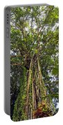 Tree Canopy Portable Battery Charger