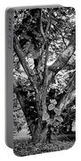 Tree Giant Portable Battery Charger