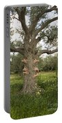 Tree Hugging Green Ecological Concept  Portable Battery Charger