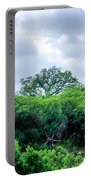 Marula Tree In African Sky Portable Battery Charger