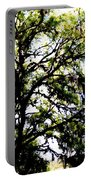 Tree In Blue Ridge Mountains Portable Battery Charger