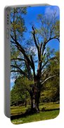 Tree In Rock Hill Portable Battery Charger
