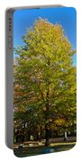 Tree In The Cemetery Portable Battery Charger