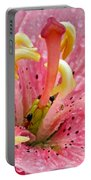 Tree Lily Upclose With Ant Portable Battery Charger