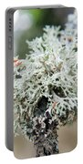 Tree Moss 2 Portable Battery Charger