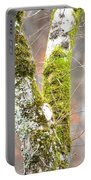 Tree Moss Abstract Portable Battery Charger