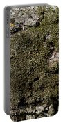 Tree Moss Portable Battery Charger