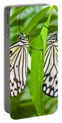 Tree Nymph Butterflies Portable Battery Charger