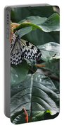 Tree Nymph On Blossom Portable Battery Charger