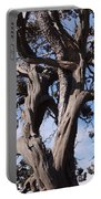 Tree Of Hope Portable Battery Charger